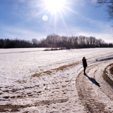 Wenn der Schnee geht