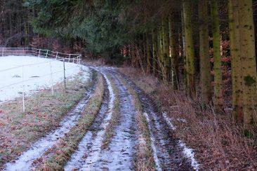 'Ortsverbindungsstrasse' zwischen Prosberg und Breitenbrunn